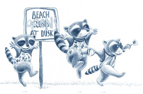 Raccoon Beach (drawing)