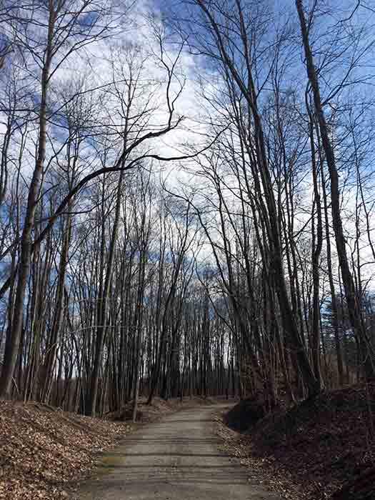 walk1-2016-03-17