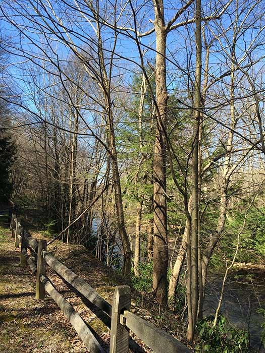 ICV trail