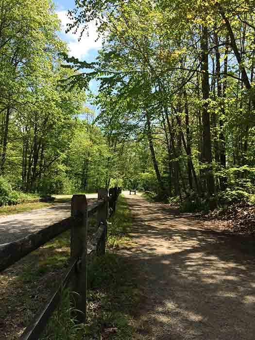 bikeTrail3-2016-05-19