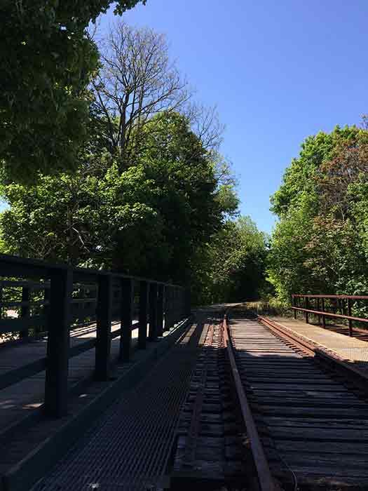 bikeTrail5-2016-05-16